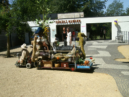 Muze Safari